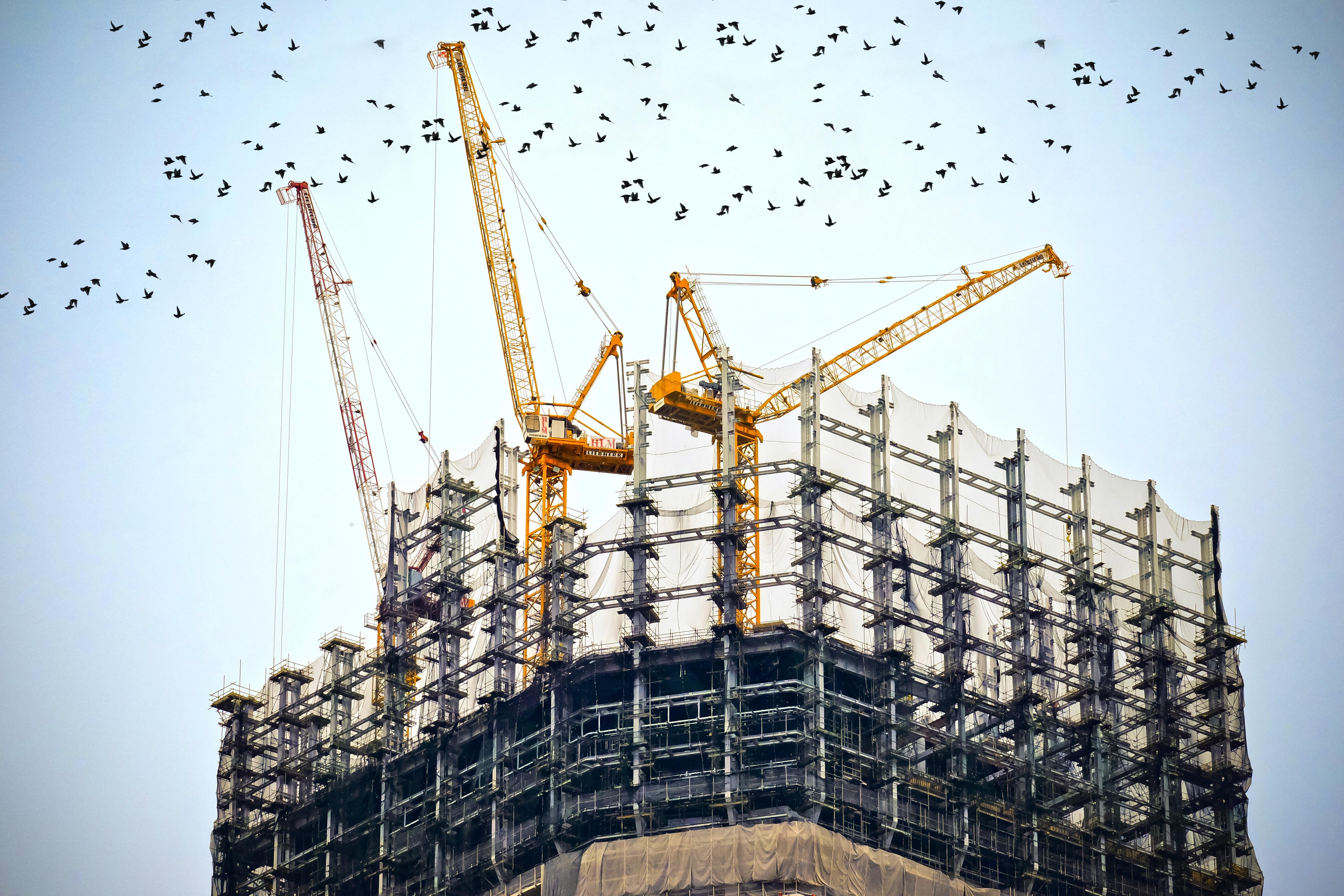 construction-nz.jpg
